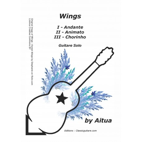 Aitua - Wings